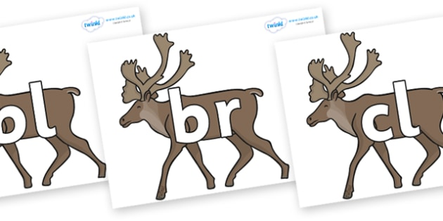 Initial Letter Blends on Caribous - Initial Letters, initial letter, letter blend, letter blends, consonant, consonants, digraph, trigraph, literacy, alphabet, letters, foundation stage literacy