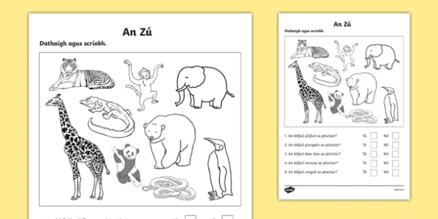 An Zú, Dathaigh agus Scríobh Activity Sheet -I rish, worksheet