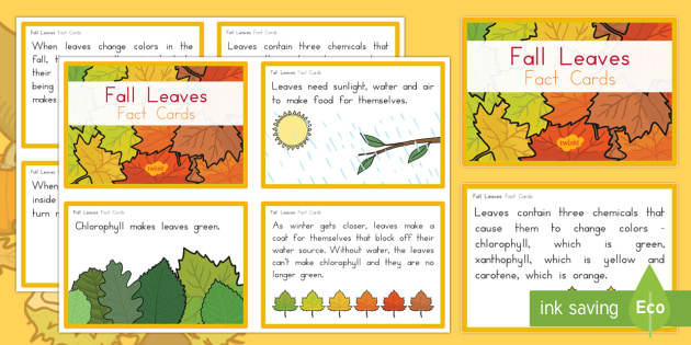 Leaf Fact Cards