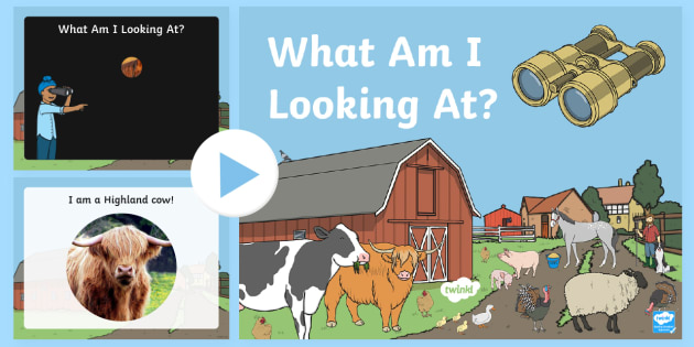Scottish Farming What Can You See? PowerPoint-Scottish - Requests CfE, Farming PowerPoint, Scottish Farming, What Can You See?, farm animals, animals,Scottis