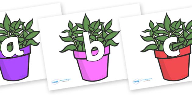 Phoneme Set on Plants - Phoneme set, phonemes, phoneme, Letters and Sounds, DfES, display, Phase 1, Phase 2, Phase 3, Phase 5, Foundation, Literacy