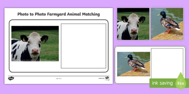 Workstation Pack: Photo to Photo Farmyard Animal Matching Activity Pack