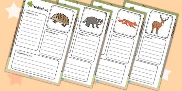 Woodland Animals Factfile Worksheet - Woodland, Wood, Animals