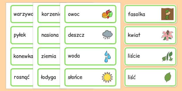 Karty ze słownictwem Wzrost po polsku - przyroda