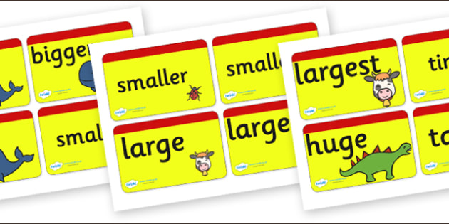 Size Word Cards for Visually Impaired - size, word, cards, word cards, size cards, visually, impaired, visually impaired,size words, visual aids