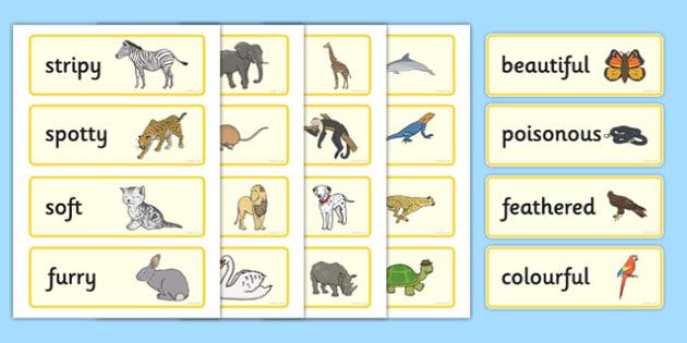 Animal Adjectives Word Cards - animal, adjective, movement, words