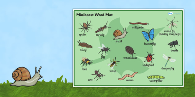 Minibeast Word Mat - Word mat, Minibeasts words, Topic, Foundation stage, knowledge and understanding of the world, investigation, living things, snail, bee, ladybird, butterfly