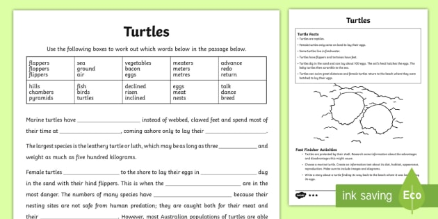 Australian Animals Years 3-6 Turtles Differentiated Activity Sheets - Australian Animals, reptiles, cloze passages, activity sheets, word search, research, fast finisher,