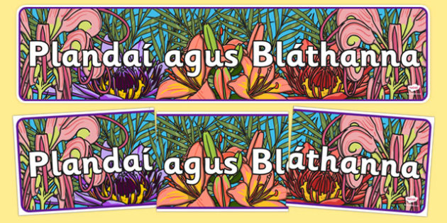 Plandaí agus Bláthanna Plants and Flowers Display Banner Gaeilge - irish, gaeilge, plants and flowers, IPC display banner, IPC, plants and flowers display banner, IPC display