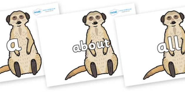 100 High Frequency Words on Meerkats - High frequency words, hfw, DfES Letters and Sounds, Letters and Sounds, display words