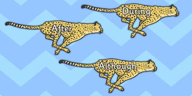 Sentence Starters on Cheetahs - sentence, starters, cheetahs