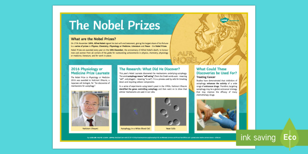 The 2016 Nobel Physiology or Medicine Prize Poster