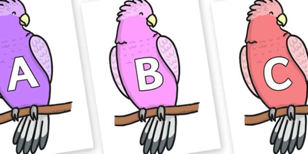 A-Z Alphabet on Galah - A-Z, A4, display, Alphabet frieze, Display letters, Letter posters, A-Z letters, Alphabet flashcards