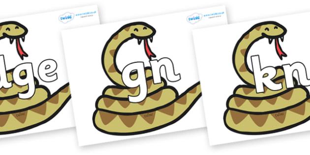 Silent Letters on Snakes - Silent Letters, silent letter, letter blend, consonant, consonants, digraph, trigraph, A-Z letters, literacy, alphabet, letters, alternative sounds