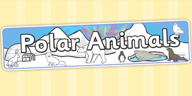 Polar Animals Display Banner - polar animals, animals, banner