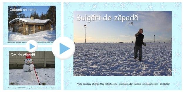 Fotografii de iarna -  Powerpoint , Romanian