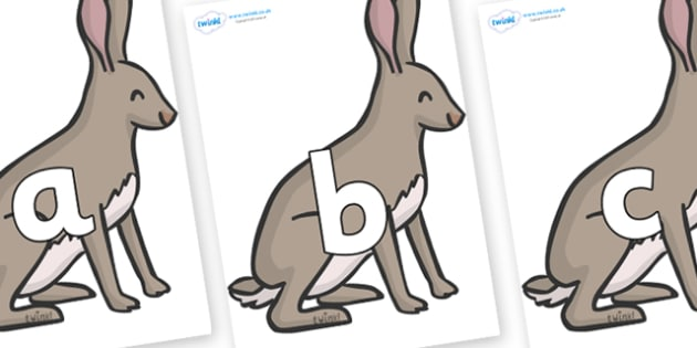Phoneme Set on Hares - Phoneme set, phonemes, phoneme, Letters and Sounds, DfES, display, Phase 1, Phase 2, Phase 3, Phase 5, Foundation, Literacy