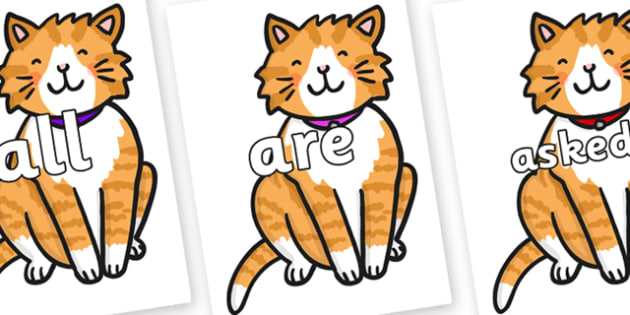 Tricky Words on Cat - Tricky words, DfES Letters and Sounds, Letters and sounds, display, words