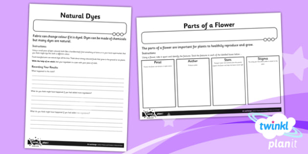 Art: Plants and Flowers UKS2 Unit Home Learning Tasks