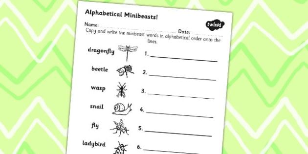 Minibeast Alphabet Ordering Differentiated - minibeasts, alphabet