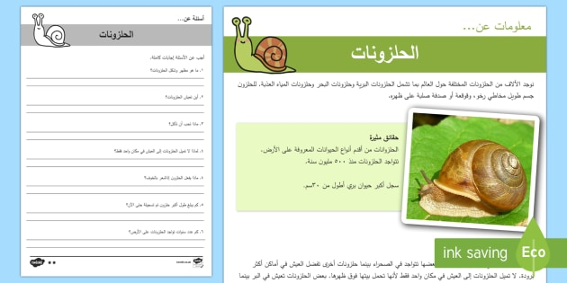 الحلزونات - أوراق عمل للفهم القرائي - الفهم القرائي، القراءة، عري، أوراق عمل، حلزونات، الحل