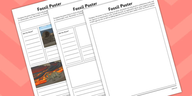 Fossil Poster Activity Sheet - activity, fossil poster, display, worksheet