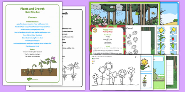 Plants and Growth Quiet Time Box