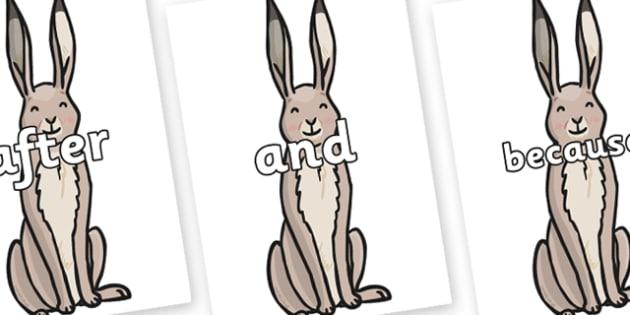 Connectives on Hare - Connectives, VCOP, connective resources, connectives display words, connective displays