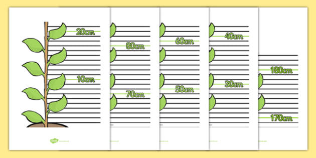 Beanstalk Height Chart - EYFS, Early Years, name measuring, maths, plants, growth