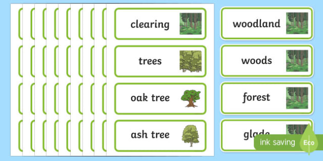Woodland Word Cards - woodland, trees, word cards, cards, flashcards, woods, forest, birds, leaf, fox, deere, bark, fern