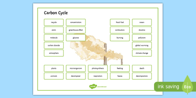 Carbon Cycle Word Mat