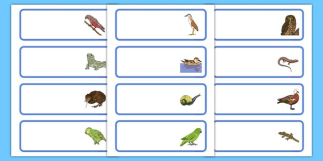 New Zealand Animals Editable Drawer, Peg, Name Labels