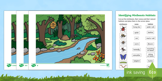 Identifying Minibeast Habitats Activity Sheets - World Around Us Resources, minibeasts, bugs, insects, worksheets, habitats,