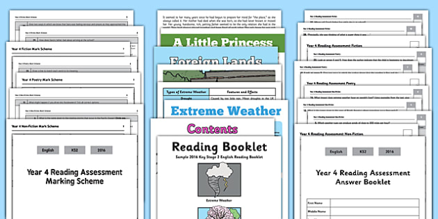 Year 4 Reading Assessment Term 3 - term 3, year 4, reading, assessment