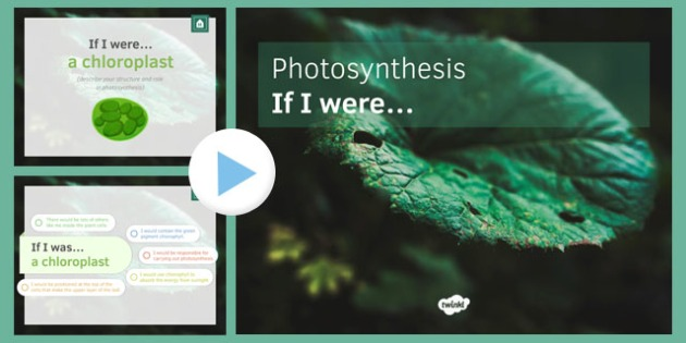 KS3 Photosynthesis If I were.... PowerPoint