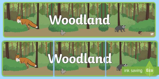Woodland Display Banner - woodland, display, banner, sign, poster, trees, woods, forest, birds, leaf, fox, deere, bark, fern