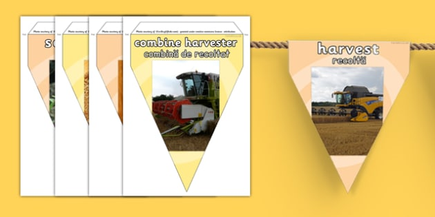 Harvest Photo Display Bunting Romanian Translation - romanian