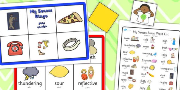 My Senses Bingo Arabic Translation - arabic, my senses, bingo, game, activity
