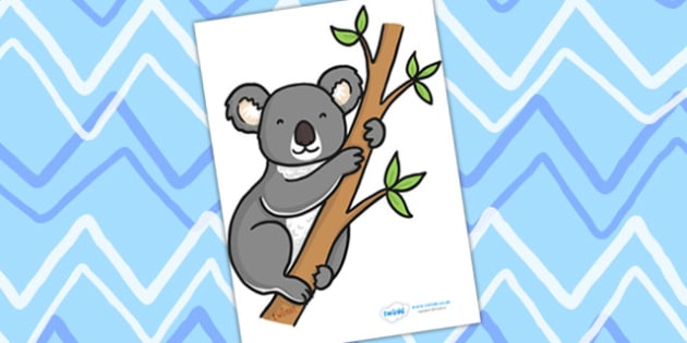 Editable Koala - Koala, display, editable, label, Australia, kangaroo, wallaby, kookaburra, wombat, crocodile, koala, possum