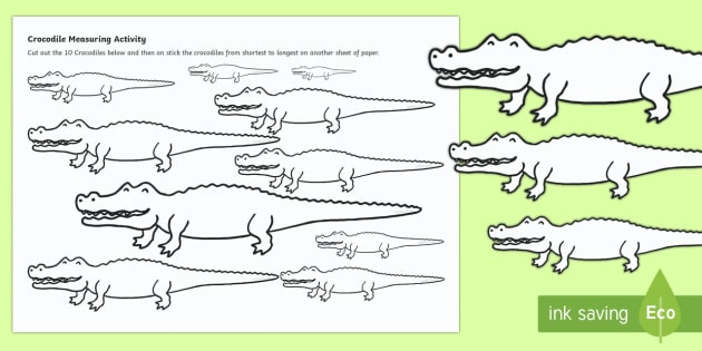 Crocodile Measurement Activity Sheet - Australian Animals, reptiles, cloze passages, activity sheets, word search, research, fast finisher,