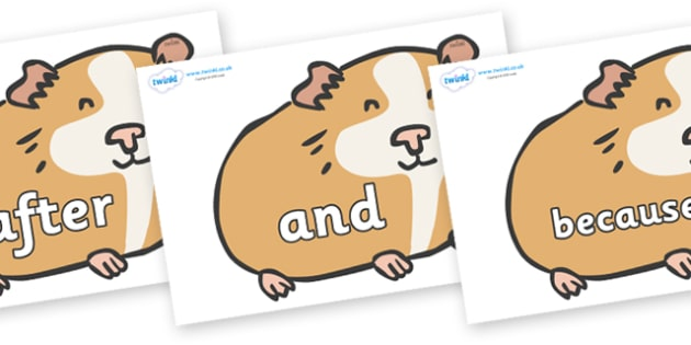 Connectives on Guinea Pigs - Connectives, VCOP, connective resources, connectives display words, connective displays