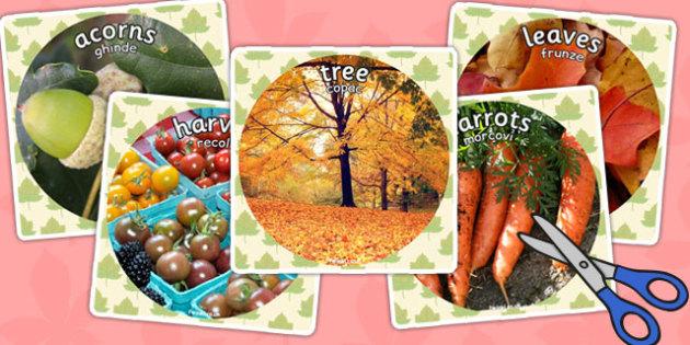 Autumn Display Photo Cut Outs Romanian Translation - romanian