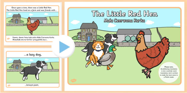 The Little Red Hen Story PowerPoint Polish Translation - polish, little red hen, story, powerpoint