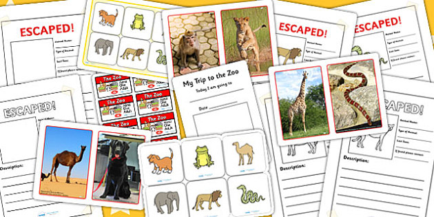 Zoo Activity Pack - animals, places, days out, activities, games