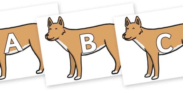 A-Z Alphabet on Dingo - A-Z, A4, display, Alphabet frieze, Display letters, Letter posters, A-Z letters, Alphabet flashcards