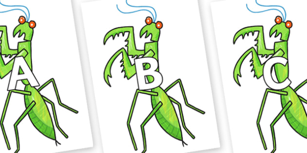 A-Z Alphabet on Praying Mantis to Support Teaching on The Bad Tempered Ladybird - A-Z, A4, display, Alphabet frieze, Display letters, Letter posters, A-Z letters, Alphabet flashcards