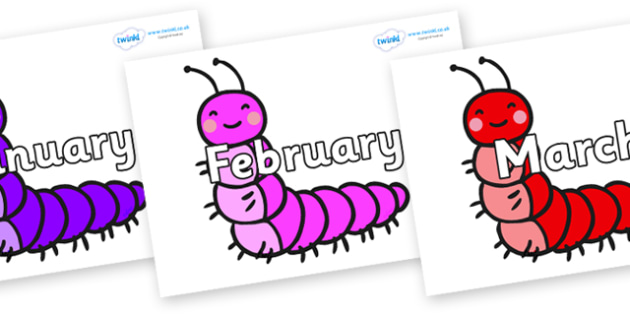 Months of the Year on Caterpillars - Months of the Year, Months poster, Months display, display, poster, frieze, Months, month, January, February, March, April, May, June, July, August, September