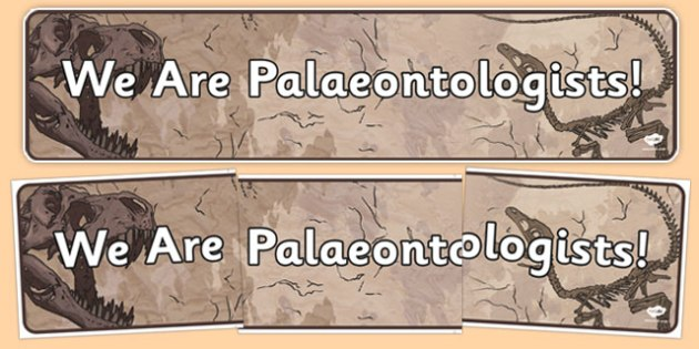 We Are Palaeontologists Display Banner - palaeontologists, display, banner, display banner