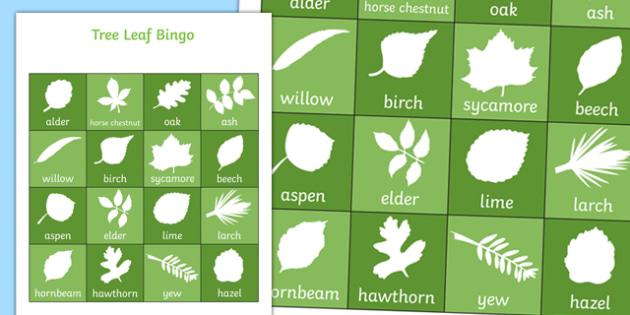 Tree Leaf Bingo - tree, tree leaf, leaf, bingo, activity, class, game