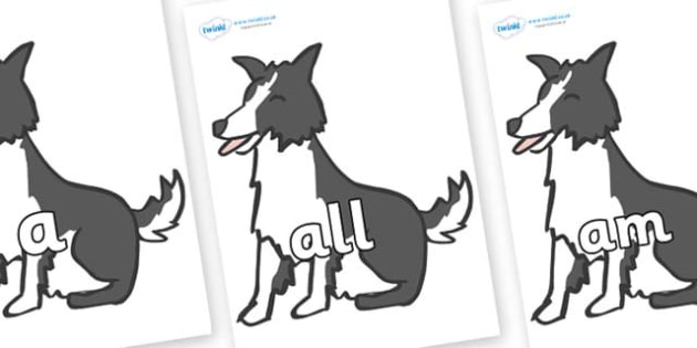 Foundation Stage 2 Keywords on Sheep Dogs - FS2, CLL, keywords, Communication language and literacy,  Display, Key words, high frequency words, foundation stage literacy, DfES Letters and Sounds, Letters and Sounds, spelling